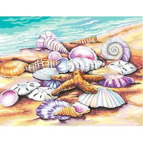 Ракушки Раскраска картина по номерам акриловыми красками Dimensions
