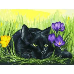 Кот и крокусы Раскраска картина по номерам акриловыми красками на холсте Белоснежка