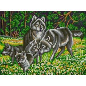 Волчья семья Канва с рисунком для вышивки бисером Конек