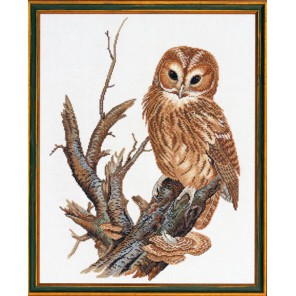 Одинокая сова Набор для вышивания Eva Rosenstand 12-677