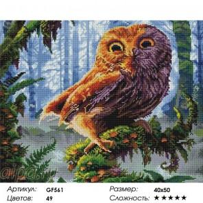 Сложность и количество цветов Сова Алмазная мозаика на подрамнике GF561