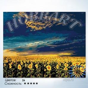 Количество цветов и сложность Подсолнухи в в закатном золоте Раскраска по номерам на холсте Hobbart HB4050098