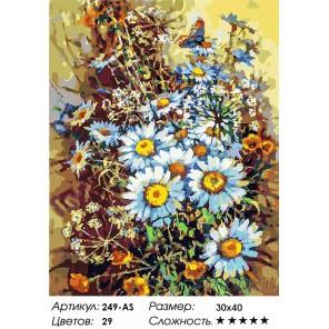 Количество цветов и сложность Букет с ромашками и бабочкой Раскраска картина по номерам на холсте Белоснежка 249-AS