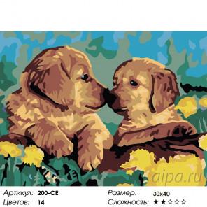Количество цветов и сложность Знакомство Раскраска картина по номерам на холсте Белоснежка 200-CE
