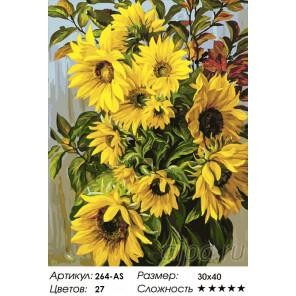 Сложность и количество красок Отражения солнца Раскраска картина по номерам на холсте Белоснежка 264-AS