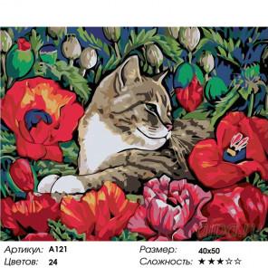 Количество цветов и сложность Отдых в маках Раскраска картина по номерам на холсте A121