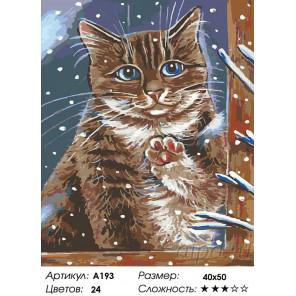 Количество цветов и сложность Зима за окном Раскраска картина по номерам на холсте A193