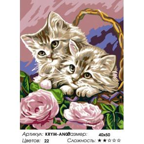 Количество цветов и сложность Котята в корзинке Раскраска картина по номерам на холсте KRYM-AN03