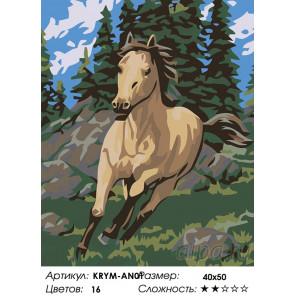 Количество цветов и сложность Бегущий конь Раскраска картина по номерам на холсте KRYM-AN01