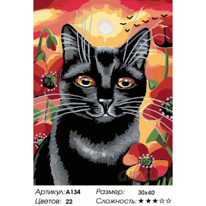 Количество цветов и сложность Котейка в маках Раскраска картина по номерам на холсте A134