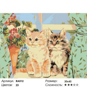 Количество цветов и сложность Котята на окне Раскраска картина по номерам на холсте RA012