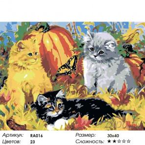 1 Котята и бабочка Раскраска по номерам на холсте Живопись по номерам