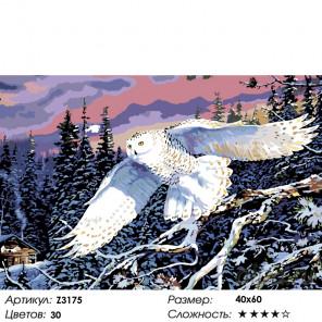Количество цветов и сложность Бесшумный полет Раскраска по номерам на холсте Живопись по номерам Z3175