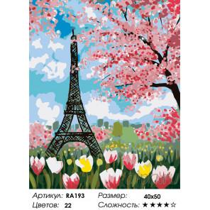Количество цветов и сложность Каникулы в Париже Раскраска по номерам на холсте Живопись по номерам RA193