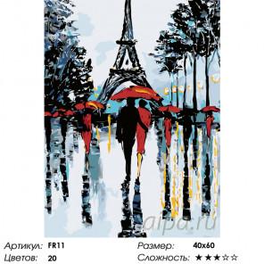 Количество цветов и сложность Парочки Парижа Раскраска по номерам на холсте Живопись по номерам FR11