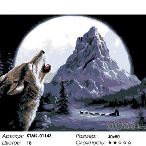 Количество цветов и сложность Северная луна Раскраска по номерам на холсте Живопись по номерам KTMK-01143