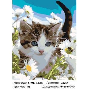Количество цветов и сложность Прогулка котенка Раскраска по номерам на холсте Живопись по номерам KTMK-84700