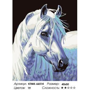 Количество цветов и сложность Породистая лошадь Раскраска по номерам на холсте Живопись по номерам KTMK-66514